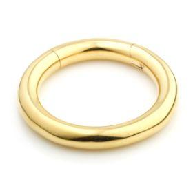 24ct Gold PVD Steel Hinge Segment Ring  - 4mm