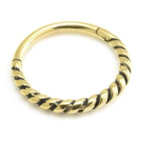 24K Yellow Gold PVD Twisted Hinge Ring