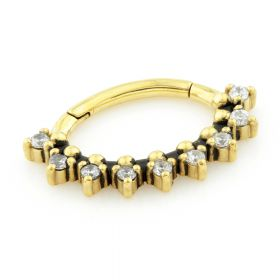 24K Yellow Gold Steel Hinge Multi Gem Daith Ring