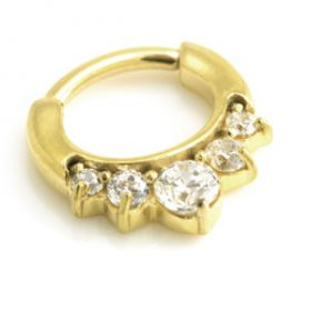 24K Yellow Gold PVD Small Jewelled Septum Ring