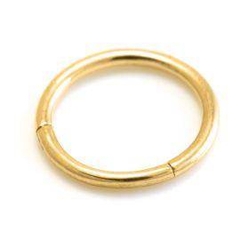 24K Gold PVD Steel Hinge Segment Ring