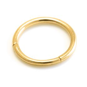 24K Gold PVD Steel Hinge Segment Ring with Charm Attachment