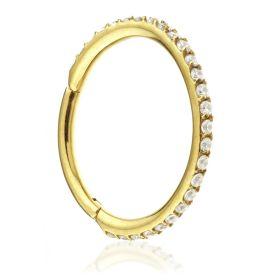 PVD Yellow Gold on Titanium Multi Gems Hinged Ring