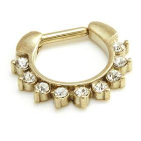 Zircon Gold Steel Multi Jewelled Septum Ring