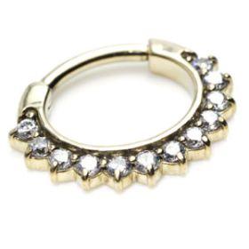 Zircon Gold Steel Multi Gem Daith Ring