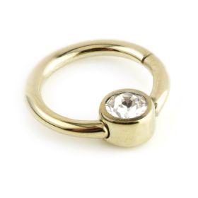 Zircon Gold Steel Hinge Segment Ring with Gem Disk