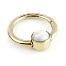 Zircon Gold Steel Opal Disk Hinge Segment Ring