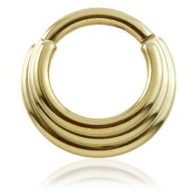 Zircon Gold Steel Graduated Hinged Ring