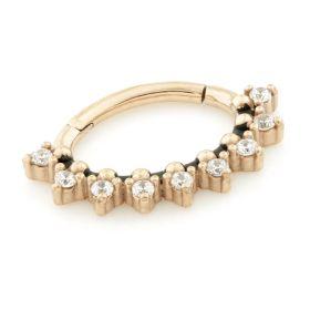 Rose Gold Steel Hinge Multi Gem Daith Ring