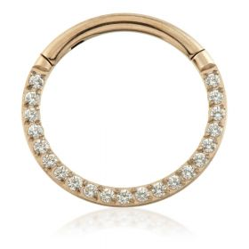 Rose Gold Titanium Front Pavé Gems Hinged Micro Ring