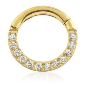 PVD Yellow Gold Titanium Forward Facing Pave Gems Hinged Ring